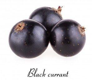 Pure Black Currant
