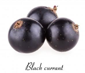 Confettura extra di Ribes Nero dolcificato  con Stevia