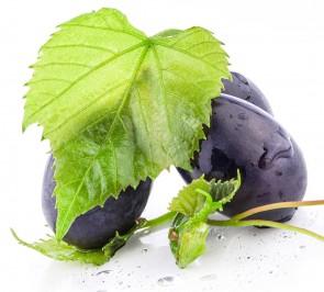 Succo d'Uva bio 100%